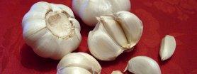 Sos czosnkowy, dietetyczny, bardzo prosty i szybki; najlepszy do placków tortilli :)