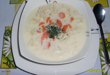 Zupa z serków topionych