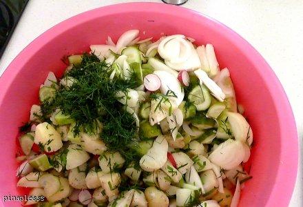 Sałatka ziemniaczana (do grilla)