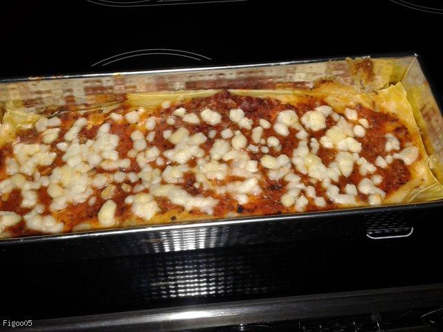 Lasagne Garfielda