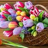 1: postaw na świeże kwiaty