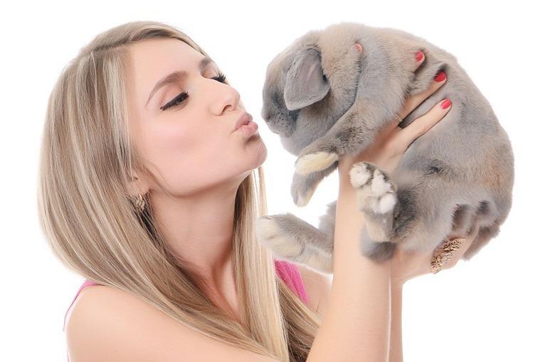 kosmetyki dla wegan i wegetarian