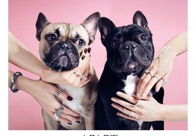 kampania apart z psami