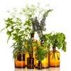 Te zioła mogą wywołać przebarwienia i wysypkę!